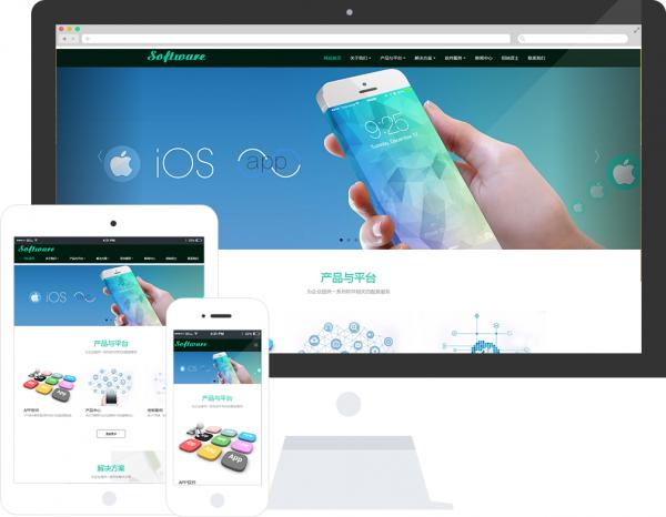 米拓模板:软件信息公司网站模板推荐 idc资讯 第1张