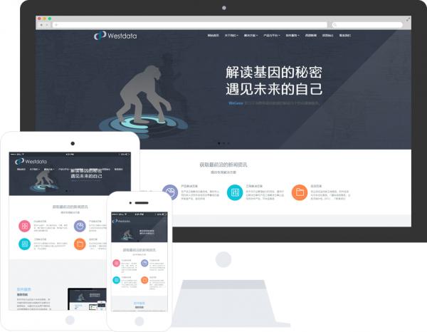 米拓模板:软件信息公司网站模板推荐 idc资讯 第3张