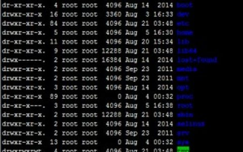 linux 文件目录操作命令ls