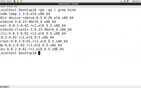 超简单步骤搭建公用DNS