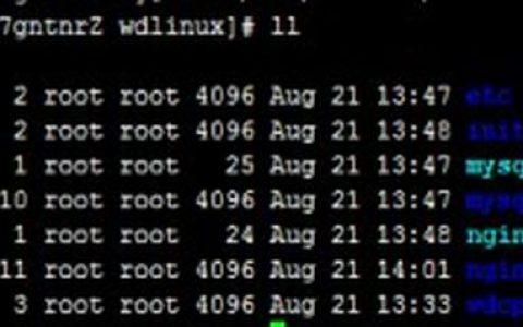 Linux文件类型与扩展名