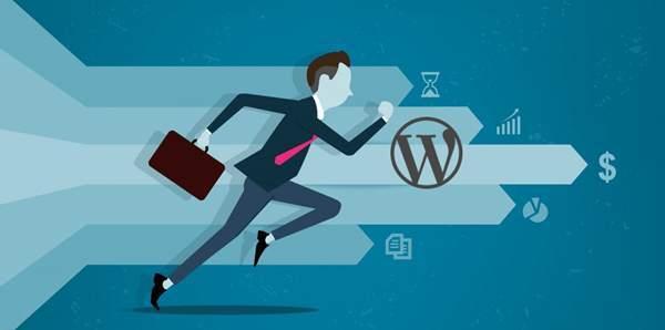 解决WordPress打开速度变慢的7个方法技巧 WordPress 第1张