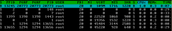 通过htop命令查看内存实际使用容量以及htop命令详解 服务器系统 第14张