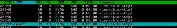 通过htop命令查看内存实际使用容量以及htop命令详解 服务器系统 第19张